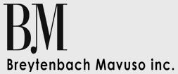 Breytenbach Mavuso Inc